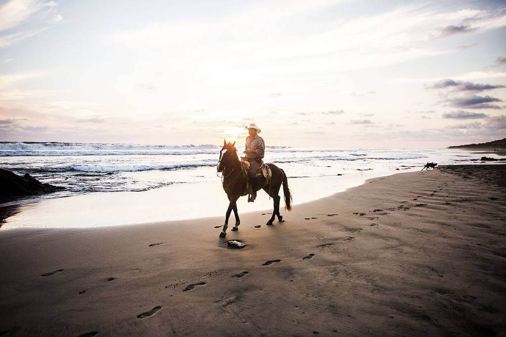 Horseback rider on the beach